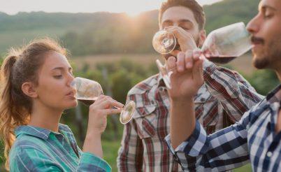 Bodegas de Rioja