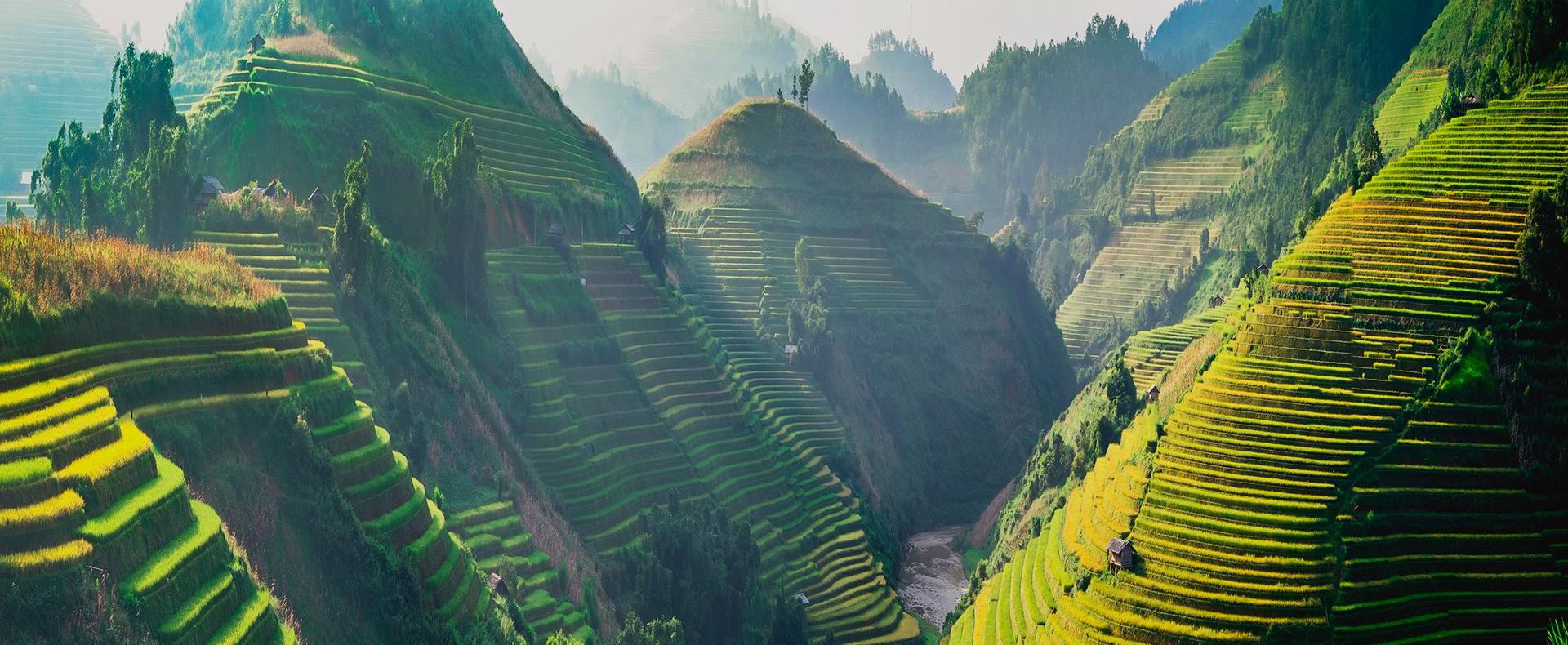 Portraits du Vietnam