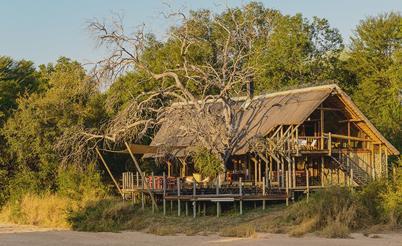 rhino post lodge